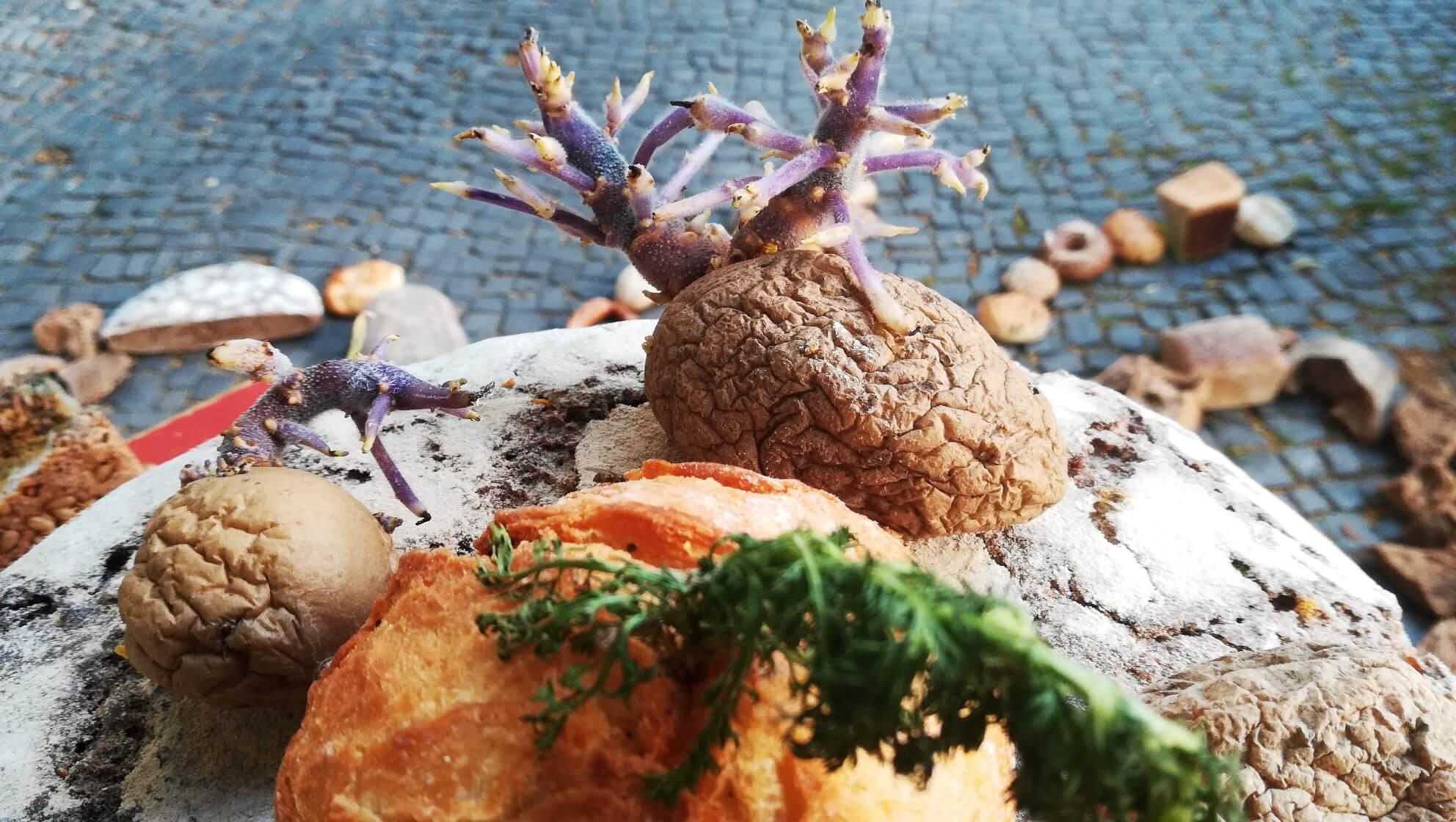 48 Stunden Neukölln 2019 – Pulszeit e.V. provoziert mit Brot auf der Straße